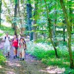 Grand-Est Meuse L'Orchidee Sauvage B&B erop uit bosrijke omgeving wandelen