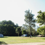 Auvergne Rhone-Alpes Allier camping trezelles grasland bomen