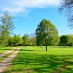 Auvergne Rhone-Alpes Allier camping trezelles gras bomen weiland ruimte rust