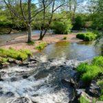 Auvergne Rhone-Alpes Allier camping trezelles riviertje bosrijk stroomversnelling