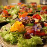 Lot Occitaine salade B&B Domaine de Velle