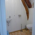 Allier Auvergne Rhone-Alpes badkamer met wastafel en toilet gites