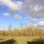 Somme Hauts-de-France chambres dhotes uitzicht