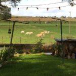 Somme Hauts-de-France landleven vee vieuw