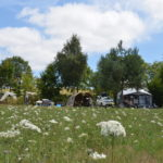 Lot Occitaine camping grasland