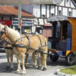 Charente Nouvelle Aquitaine chambres dhotes pipowagen 2 paarden
