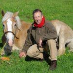 Charente Nouvelle Aquitaine paard